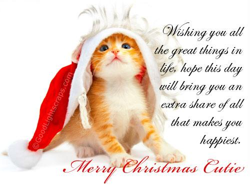 New Christmas wishing cat